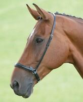 Shires Blenheim Padded Drop Noseband - Black or Havana Pony/Cob/Full
