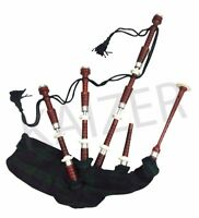 Scottish Great Highland Rosewood Bagpipe