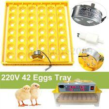 42 Egg Automatic Incubator Tray Digital Hatching Temperature Control 220V