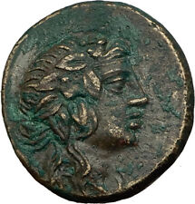 AMISOS in PONTUS 100BC Mithradates VI Time Ancient Greek Coin DIONYSUS i65508