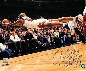 Dennis Rodman Autographed Signed 20x24 Chicago Bulls Dive Photograph