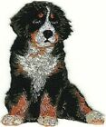"""2 1/4"""" x 2 3/4"""" Sitting Bernese Mountain Dog Breed Embroidered Patch"""