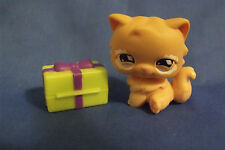 Toys Hasbro Littlest Pet Shop 490 Tan Persian Cat with Orange Eyes and Present