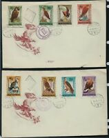 HUNGARY 1962 Air. Birds of Prey 2 x FDC Registered to USA