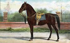 Antique Print-WOYKO-HORSE-WILHELMINA-Eerelman-1898
