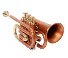 POCKET TRUMPET Bb PITCH COPPER & BRASS + BEST CHOICE OF DIRECTOR