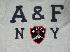 ABERCROMBIE & FITCH SKI RESCUE EMBROIDERED SEW ON LOGO SMALL GRAY T-SHIRT K1949