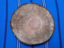 Sottopentola fetta di tronco albero naturale sotto pentola presina legno sughero