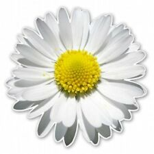 Daisy Flower Car Vinyl Sticker - SELECT SIZE