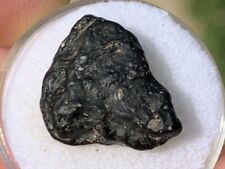 Nwa 6423 Cv3 Meteorite 1.6g. Complete Individual With Visible Cai's