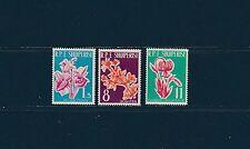 Albanie  fleurs diverses   1961   num: 555/57 **