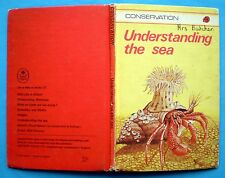 Understanding The Sea Ladybird vintage book sea nature gull jellyfish crab 1979