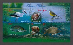 Moldova 2014 Fauna, Birds, Fish, Snails, MNH sheet
