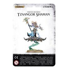 Warhammer Fantasy/Age of Sigmar Tzeentch Arcanites Tzaangor Shaman NIB