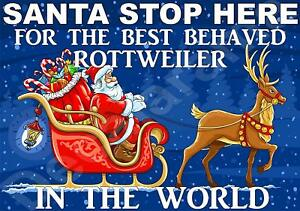 ROTTWEILER SANTA Sign - STOP HERE FOR BEST BEHAVED -Ideal Novelty Laminated Gift