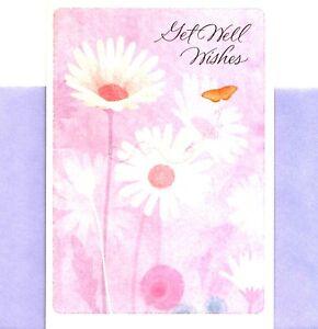 Get Well Soon Butterfly Butterflies White Daisy Daisies Hallmark Greeting Card