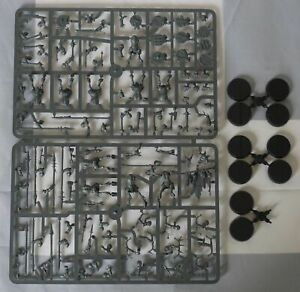 Warhammer Age of Sigmar Beasts of Chaos Ungors (10 Models)