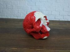 Tribal Skull Skeleton Head Statue from Billiard Pool Ball Number 11 Hand Carved
