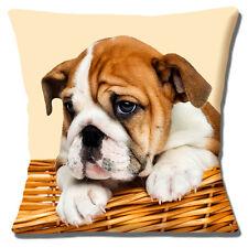 English Bulldog Puppy Dog Cushion Cover 16x16 inch 40cm Cute Pup in Basket Cream