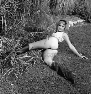 1960s Negative-sexy pinup girl Carol Lee Shamburger-cheesecake t981008