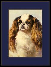 English Print Cavalier King Charles Spaniel Dog Picture