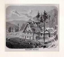 Schwarzwälder Bauernhaus - orig. Holzstich 1866