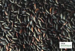 rice.boutique MODENA NIGHT, Italian Black Boutique Wild Rice, 200g