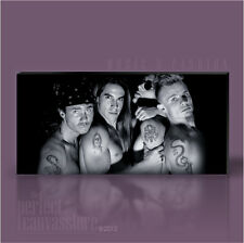 RED HOT CHILLI PEPPERS AWESOME GIANT ICONIC CANVAS POP ART PRINT - Art Williams