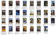 Clinton Anderson Lot Bundle of 32 Horse Training Video Courses-101 Dvd disks