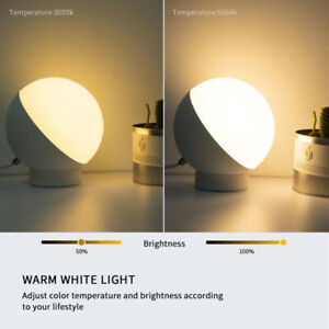 LED Smart Wifi Voice Control Night Light Table Lamp compatible with Alexa/Google