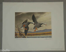 RW39 1972 FEDERAL  DUCK STAMP PRINT Emperor Geese by Cook Super Nice!