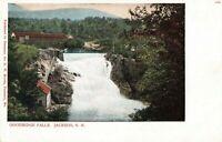 Postcard Jackson Falls Jackson Michigan