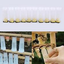US Beekeeping Rearing Cup Kit Honey Queen Bee Beekeeper Tools Farming Supplies