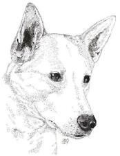 Canaan Dog Print