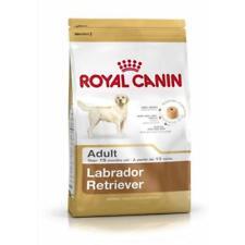 Royal Canin Dog Food Labrador 12KG ADULT
