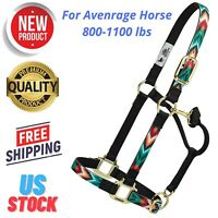 NEW TACK Adjustable Triple Ply Nylon Full Horse Size Halter with Brass Hardware