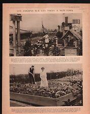 WWI Garden New-York USA Plateau de Californie Chemin des Dames 1917 ILLUSTRATION