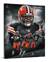 Baker Mayfield Canvas 16x20 Cleveland Browns NFL Quarterback Ohio