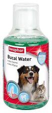 BEAPHAR BUCAL WATER  Hygiène Bucco-dentaire haleine fraiche  chiens/ chats 250ml