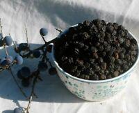 Krauterino24 - Schlehdornfrüchte ganz Schlehen - 250g