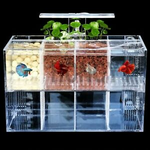 LED Light Acrylic Clear Aquarium Mini Betta Fish Tank Desktop Water Pump - 4