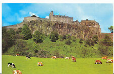 Scotland Postcard - Stirling Castle - Showing Cows in The Field    ZZ2849