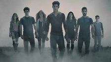 "Teen Wolf Tv Show Fabric poster 24"" x13"" Decor 06"