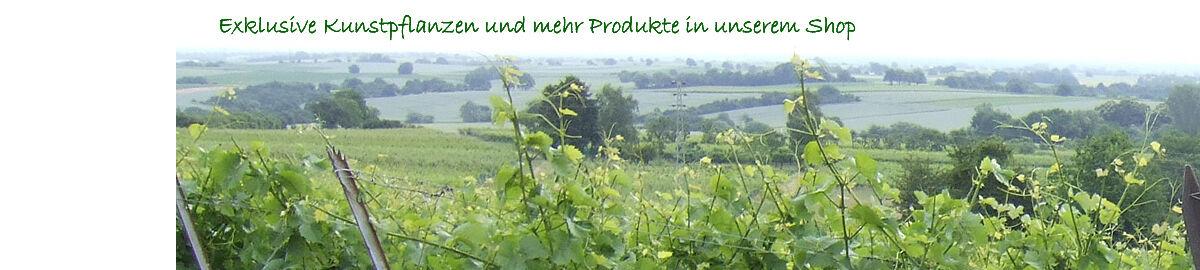 licht_und_gruen_produkte24