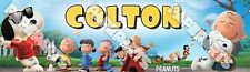 Personalized The Peanuts Movie Custom Name Painting Poster Name Art Banner
