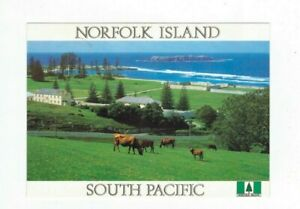 NORFOLK ISLAND 1995 45c Whale on Commercial Postcard,cds NORFOLK ISLAND