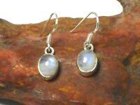 Fiery Oval  MOONSTONE  Sterling Silver 925 Gemstone Earrings