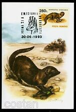 1993 Egyptian mongoose,Frog,Ichneumon,Chamois,Wild animals,Romania,FDC maxi card