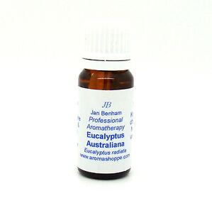 Eucalyptus radiata Essential Oil - Therapeutic Grade