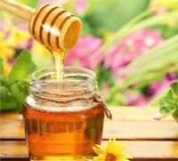 Honey Wooden Dipper Drizzler Spoon Pot 8cm (1, 5, 10, 25, 50, 100, 250, 500)